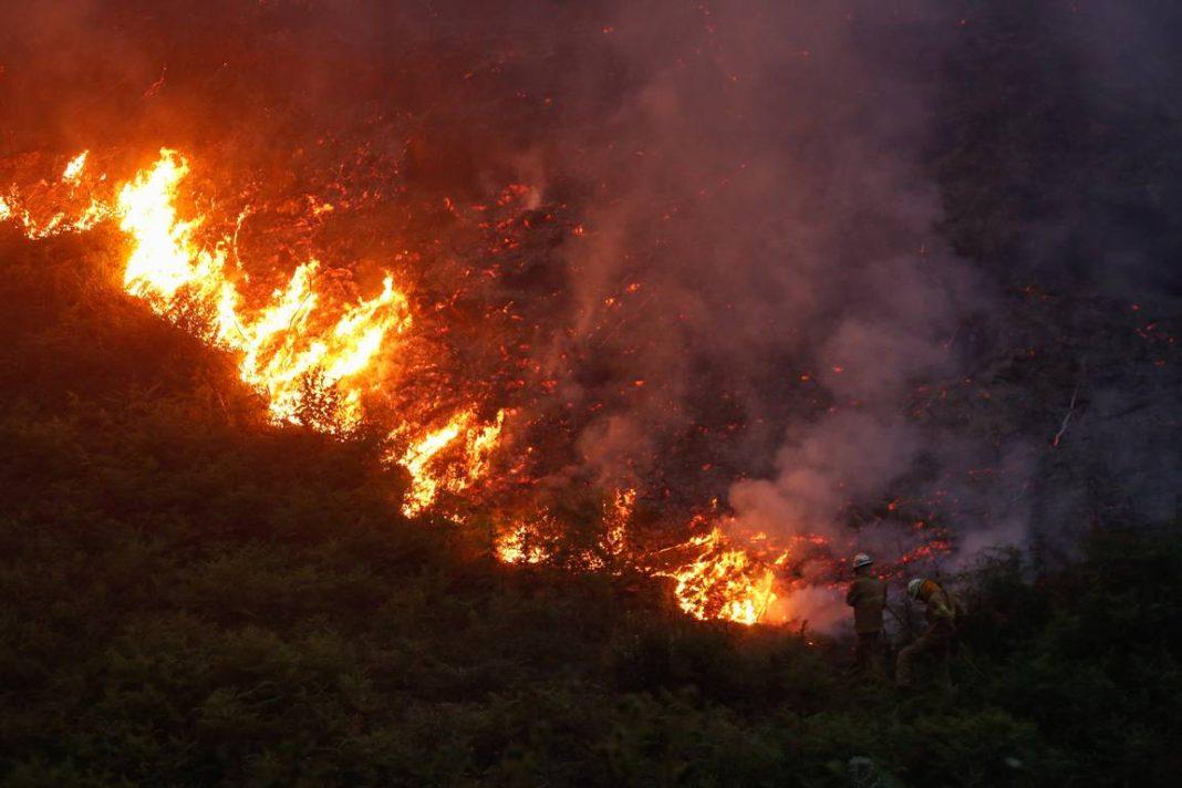 Incendio en Portugal. 24Horas.cl