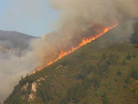 ACULCO Media - Incendios Asturias
