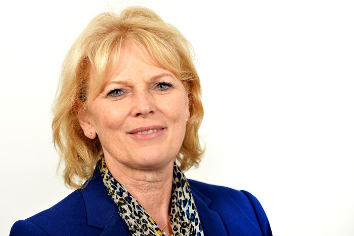 ana soubry mp business