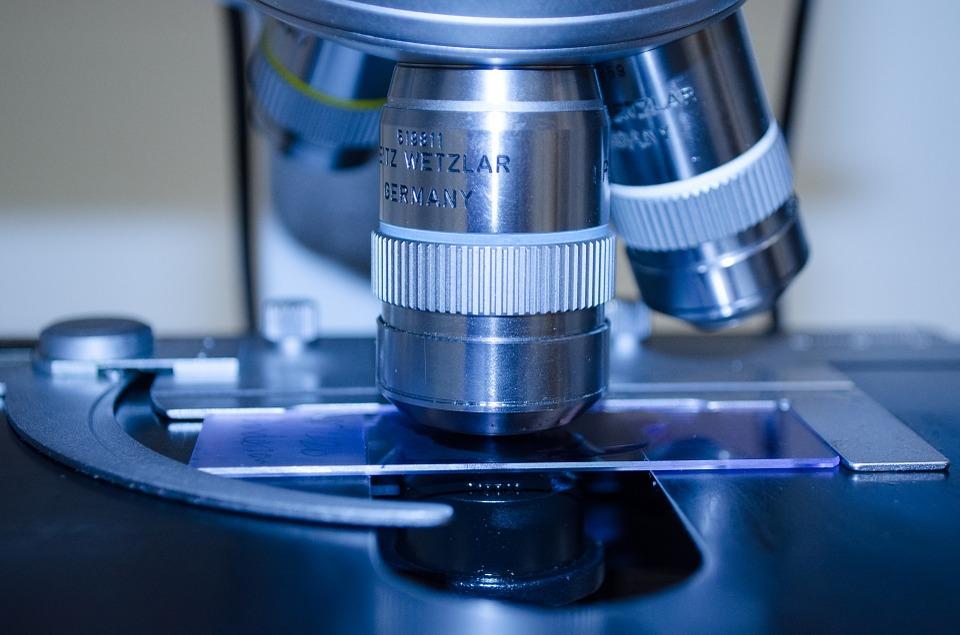 Científicos corrigen una enfermedad hereditaria en embriones humanos. Imagen de archivo.