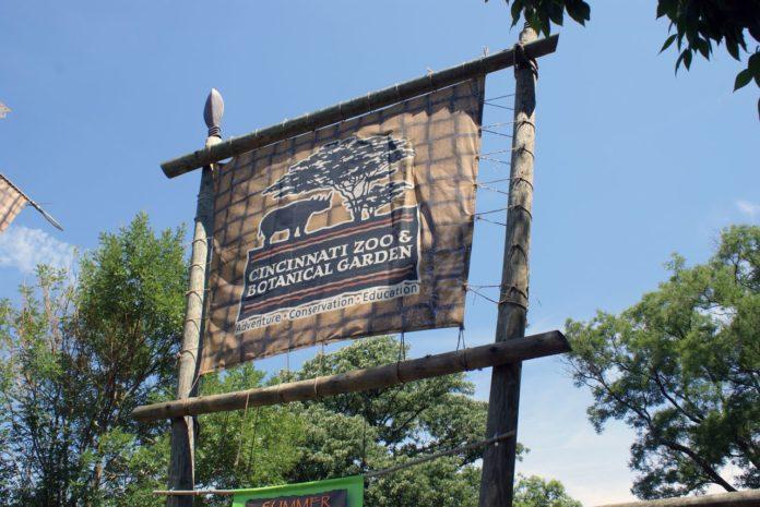 Hacen vigilia cerca del zoológico de Cincinati por muerte de gorila tras accidente con un niño