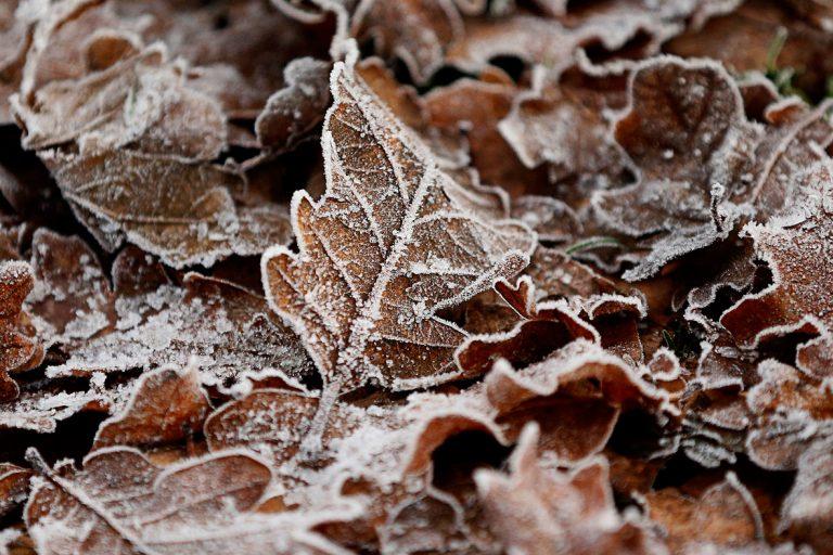 Continuará el frio en Inglaterra y Gales