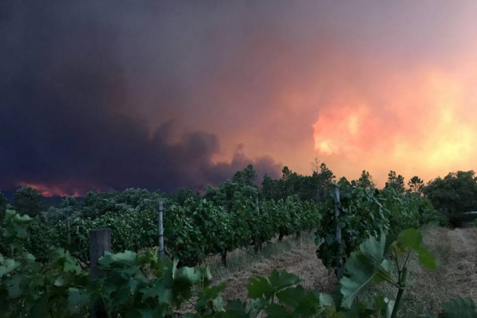 El incendio de Portugal comenzó el sábado. Exame.